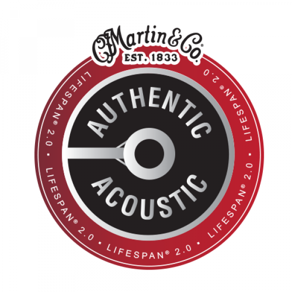 Martin&Co Authentic Acoustic Lifespan 2.0 MA535T Phosphor Bronze 11 Custom Light